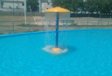 Ciuperca piscine